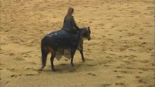 2011 Congress Champion-Stacy Westfall, Freestyle Reining Bridleless