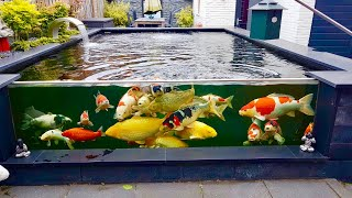 MOST BEAUTIFUL PRIVATE BACKYARD KOI POND IN THE WORLD