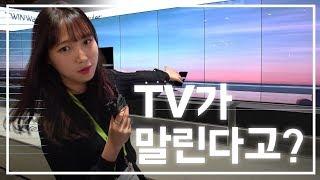[CES 2019] 도화지야 TV야? 돌돌돌 말리는 LG OLED TV R (LG전자, 롤러블 TV, 4K UHD)