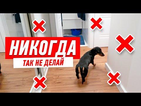 БЕЛЫЙ РЕМОНТ КВАРТИРЫ. ОТЗЫВ ЗАКАЗЧИКА. photo