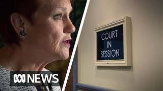 Hanson convinces government to look into Family Court system - again   ABC News
