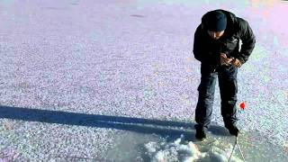 A successful catch ice fishing
