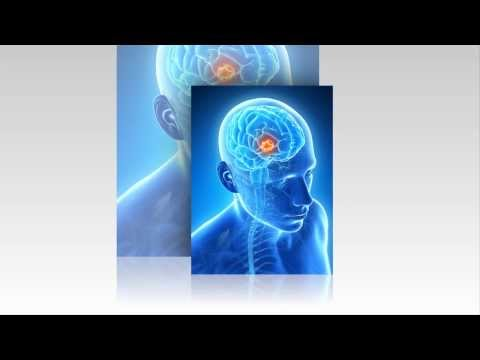 Repairing Stroke Damage Using Adult Stem Cells - Save Your Adipose Tissue with ATGRAFT