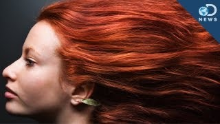 7 Things You Didn't Know About Redheads