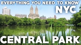 Central Park NYC Travel Guide: Everything you need to know