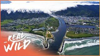 Wild West Coast [New Zealand Documentary] | Wild Things