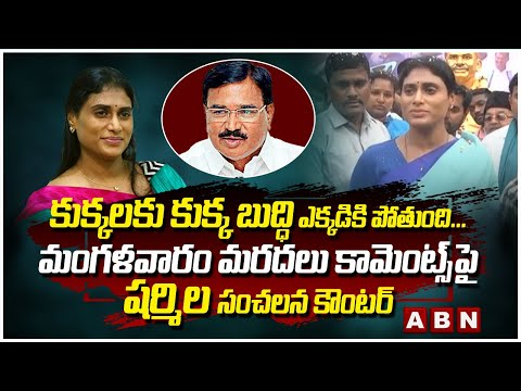 YS Sharmila gives strong counter to Minister Niranjan Reddy over his remarks