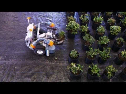 Robot Farming And The Future Of Food: Hard Work On Wheels - Smashpipe News Video
