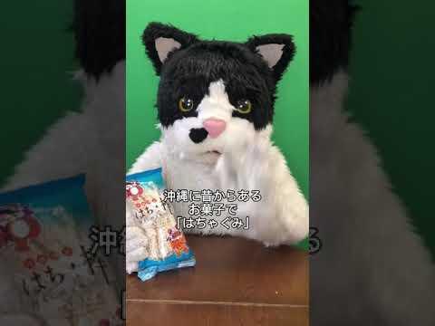 むぎ(猫)「沖縄こんちくわシリーズvol.8はちゃ棒」
