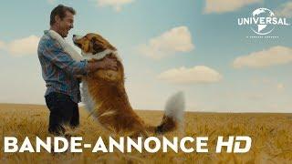 Mes autres vies de chien :  bande-annonce VOST