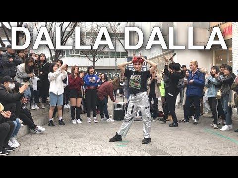 [Eddie] ITZY(있지)-DALLA DALLA(달라달라) Dance Cover(댄스커버) | Eddie