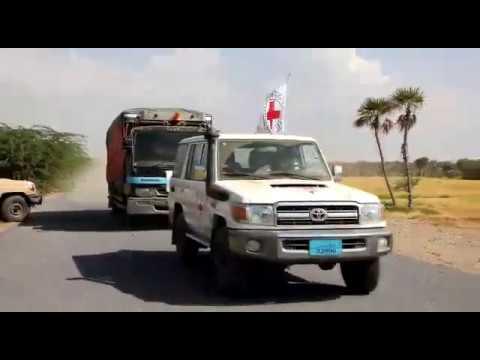 الحوثيون يمنعون قافلة إغاثية للصليب الأحمر من دخول الدريهمي