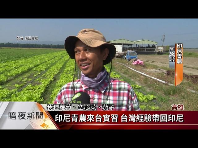 印尼青農來台實習 4位青農投入高雄農業