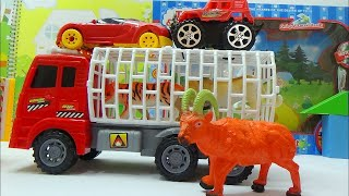 Baby Studio Play Farm Truck Animal Toys Car Toys