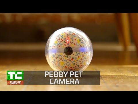 Pebby adds play to pet monitoring