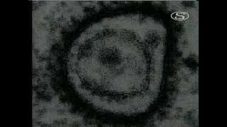 Míľniky vedy a techniky - Žiarenie