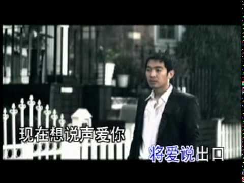 心痛2009   主唱: 欢子(歓子)