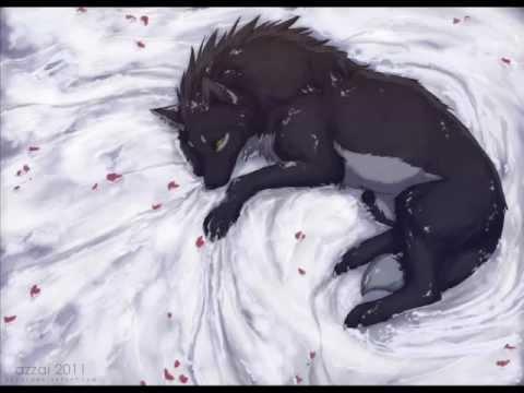 anime wolves comatose youtube