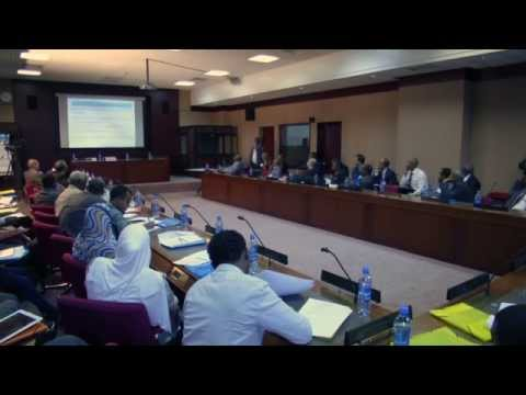 The Second New Nile Conference Dec 2014 at UN ECA Addis Ababa