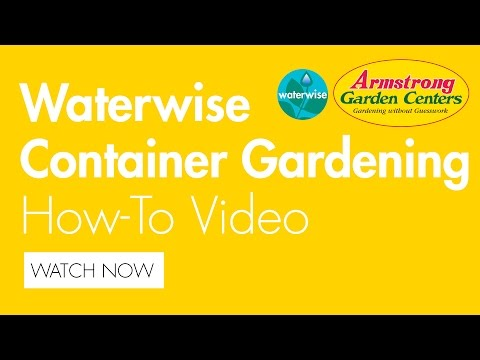 Waterwise Container Gardening for California