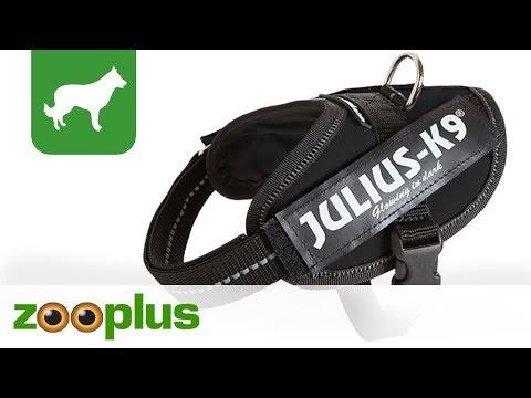Sattelgeschirr Julius K9 IDC® | Powergeschirr schwarz | zooplus
