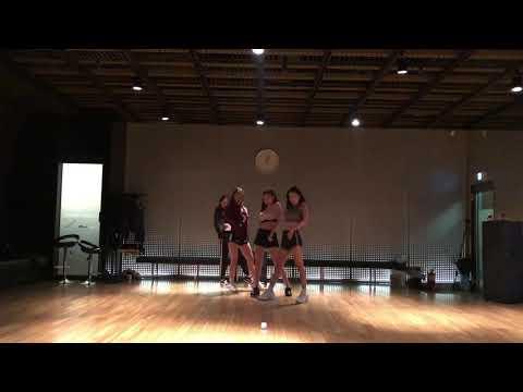 DDU-DU DDU-DU - BLACK PINK / DANCE PRACTICE VIDEO (CRAZY ver.)