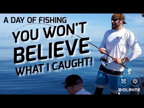 A Day Fishing: You Wont Believe What I Caught