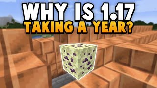 Why is 1.17 Taking A Year To Develop??? (+ Mob C)