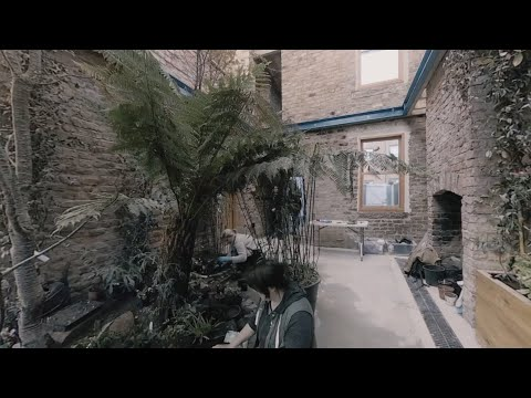 360-degree video captures creation of Assemble's Granby Winter Garden