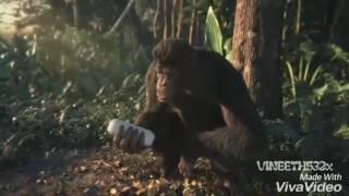 Despacito funny Monkey Dance