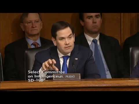 Rubio: Neither political party should take Russia sowing chaos in American politics lightly