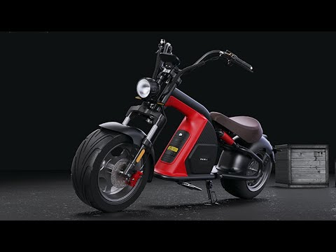 elektroroller chopper Rooder Runner citycoco electric scooter 30ah EEC COC E-scooter r804-m8