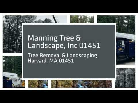 Tree Removal & Landscaping 01451
