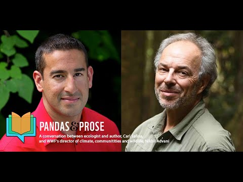 Pandas and Prose with Carl Safina