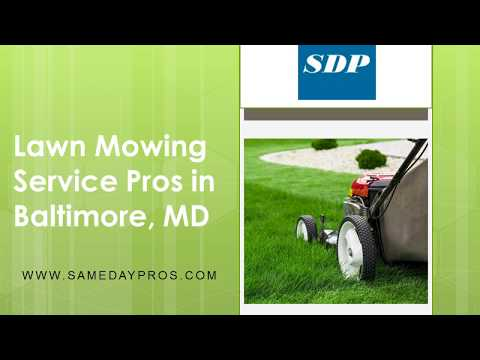 Professional Lawn Mowing Service in Baltimore
