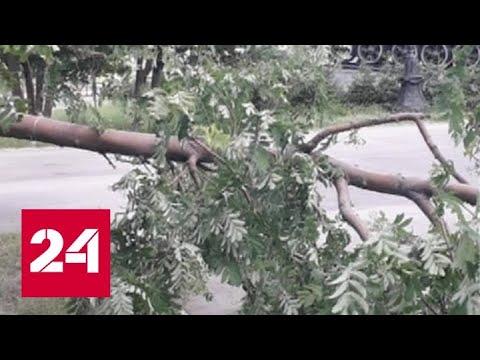 На Алтайский край и Кузбасс обрушился шторм