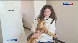 В Омске появился кот, который точно предсказывает исход матчей «Авангарда»