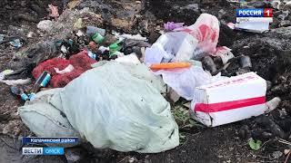 Калачинскому району из-за гигантской свалки может грозить экологическая катастрофа