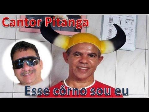 Baixar Cantor Pitanga - Esse côrno sou eu (Paródia)