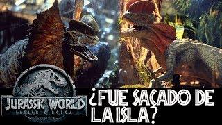 ¿Qué Pasó con el Dilophosaurus en Jurassic World 2? - ¿Lo Volveremos a Ver?