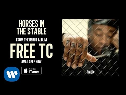 Ty Dolla $ign - Horses In The Stable [Audio]