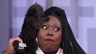 What's Chillin' on Loni's Head?!