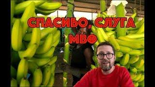 Банановая республика. Теперь