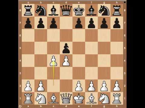 Chess Openings: The Queen's Gambit