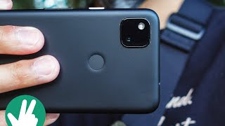 Pixel 4a Real World Camera Test