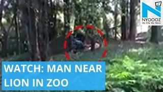 Man jumps into lion enclosure in Thiruvananthapuram Zoo..