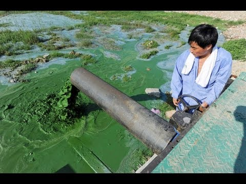 Move Over, Smog: China's Water Pollution Off the Charts
