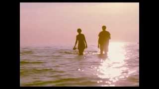 Timecop1983 - Wild Love (feat. Ollie Wride)