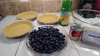 Super EASY !! NO BAKE!!  Blueberry Pie