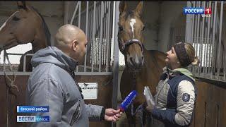 В Омской области разыграли медали Кубка региона по конному спорту